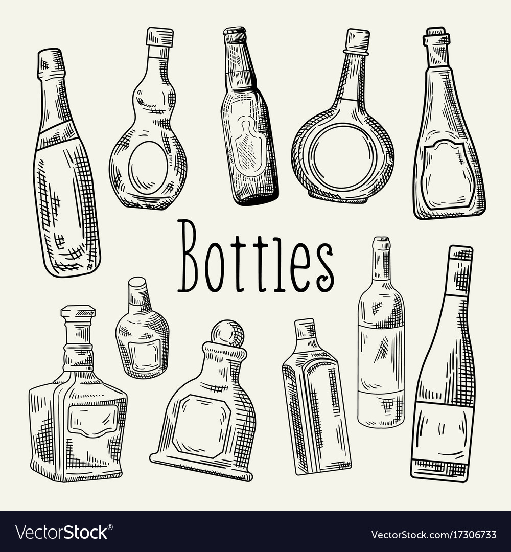 Hand drawn bottles doodle wine cognac vector image