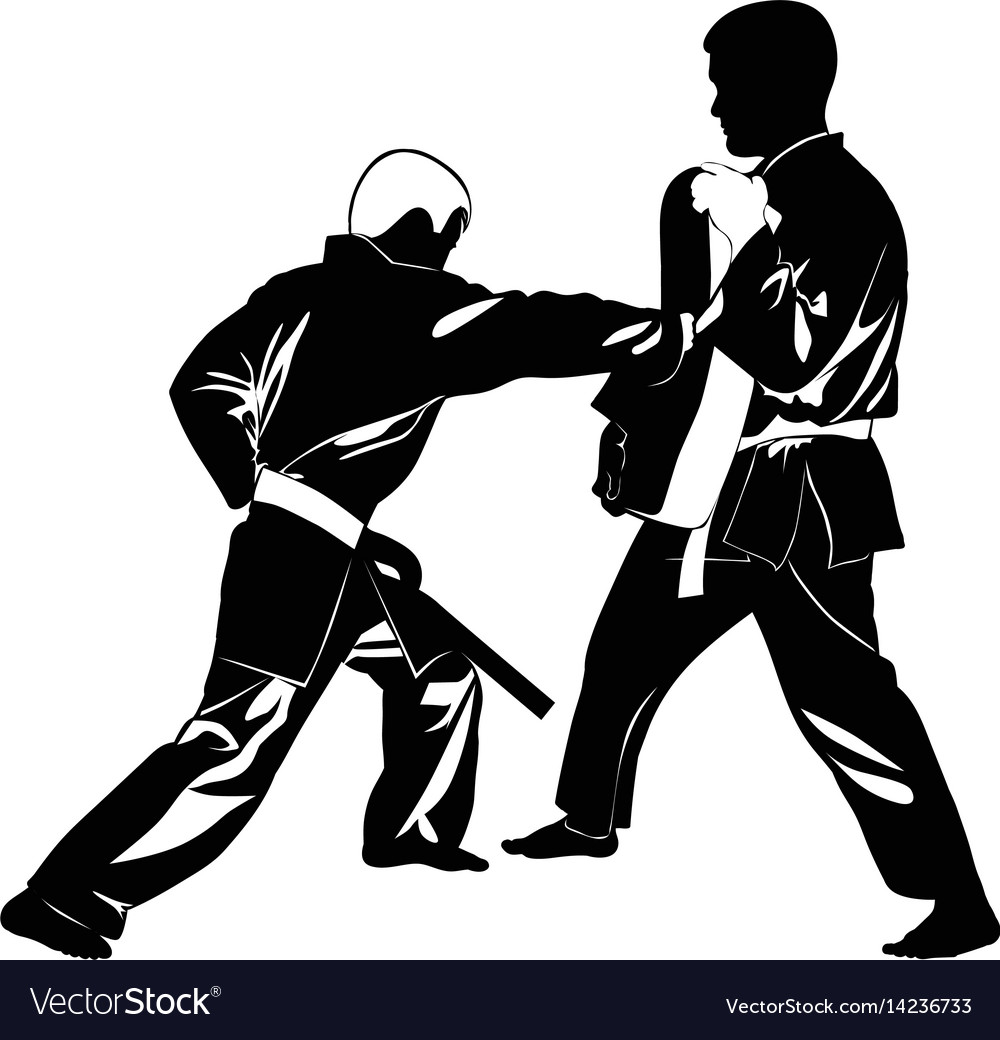 Image of martial arts athletes vector image