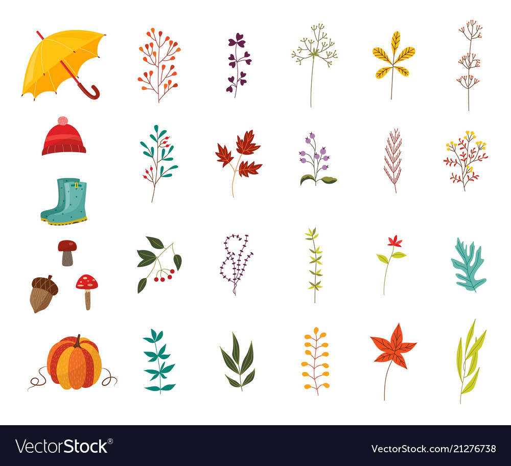 Autumn plants and clothes accessories set with