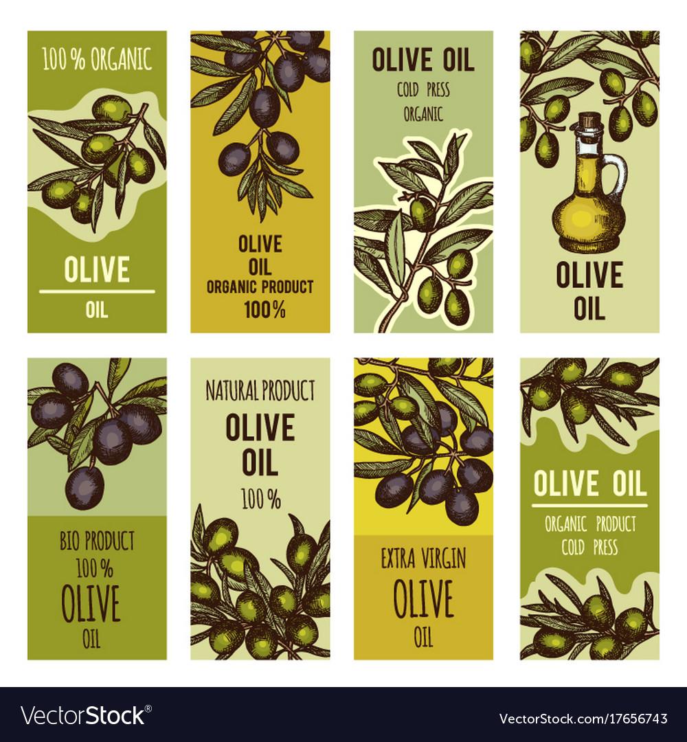 Labels set for olive oil bottles design