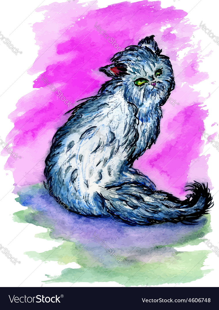 Persian Cat Sketch3 vector image