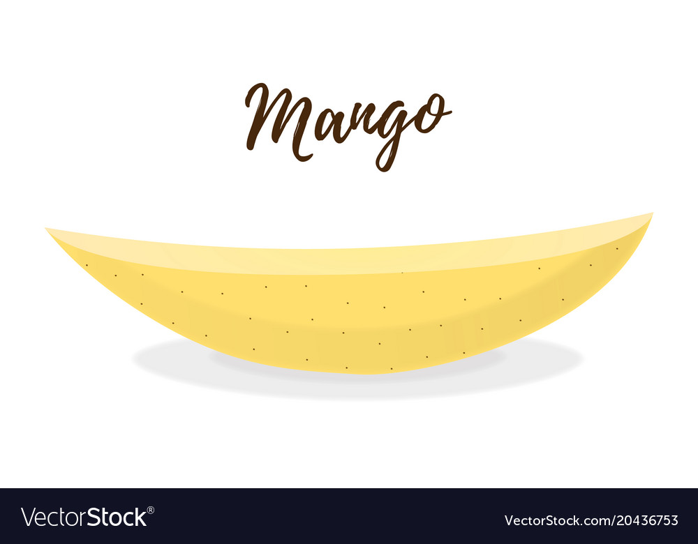 3d realistic tropical fruit - mango slice