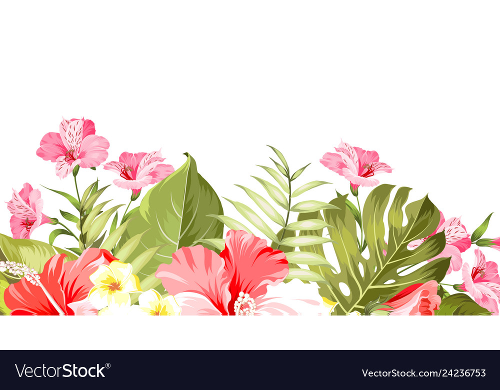 Summer vacation card tropical flowers of plumeria