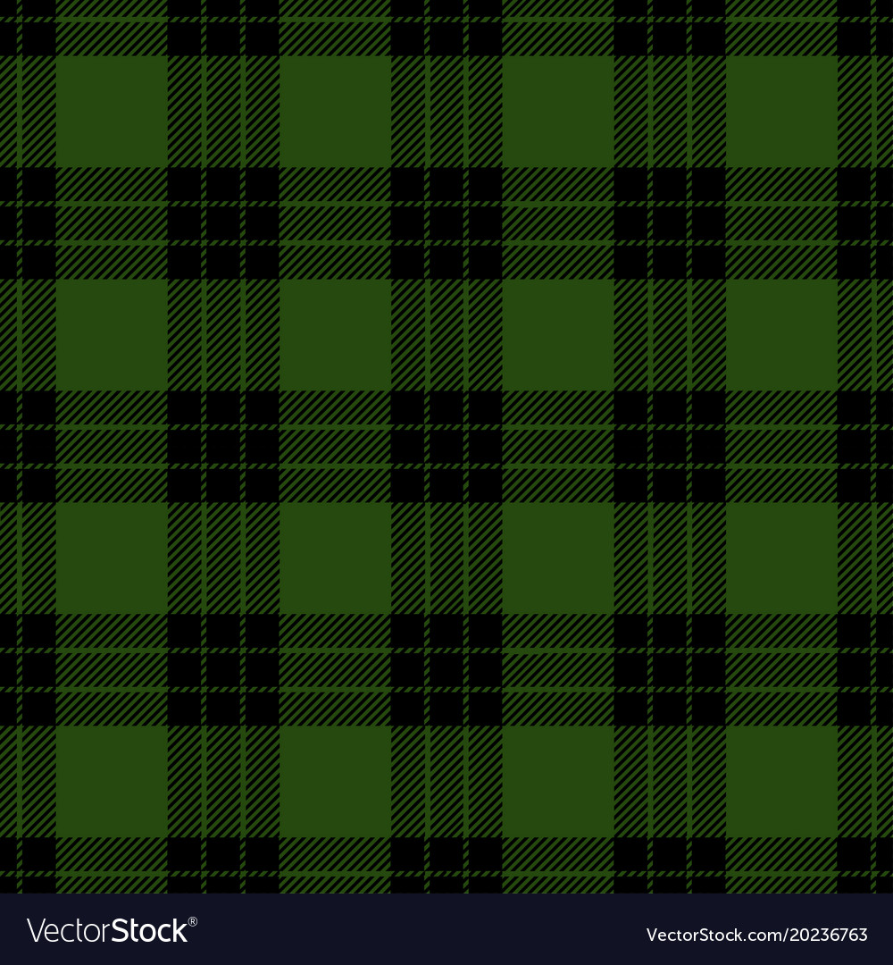 Clan graham scottis tartan plaid seamless pattern vector image