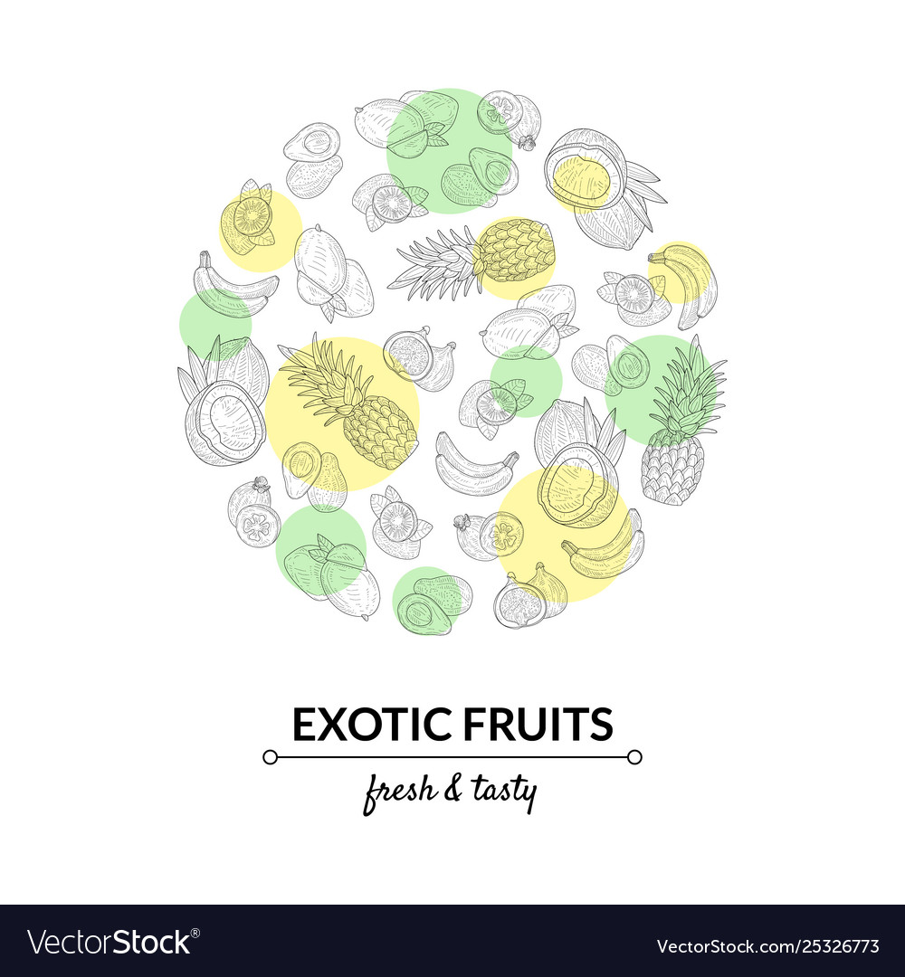 Exotic fruits banner template tasty and healthy