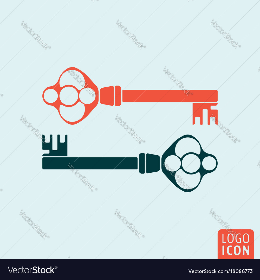 old key icon isolated vector image