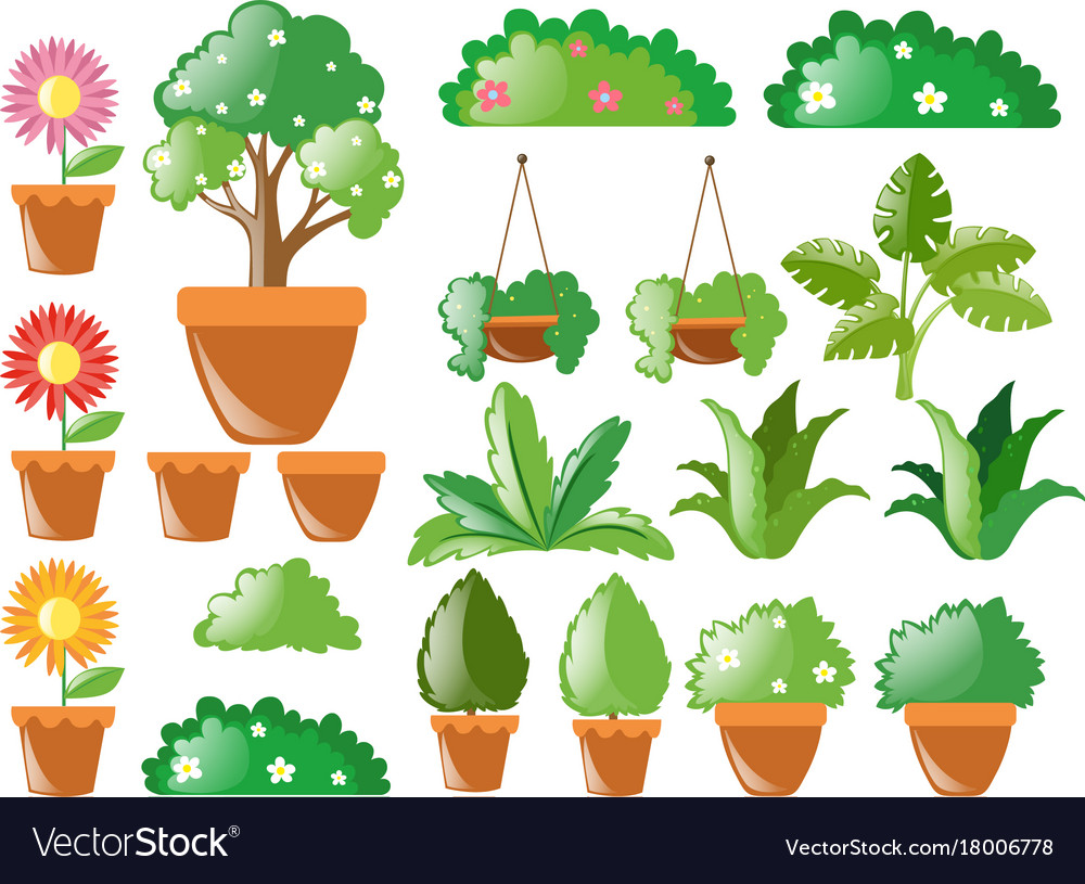 Different Types Of Plants Royalty Free Vector Image