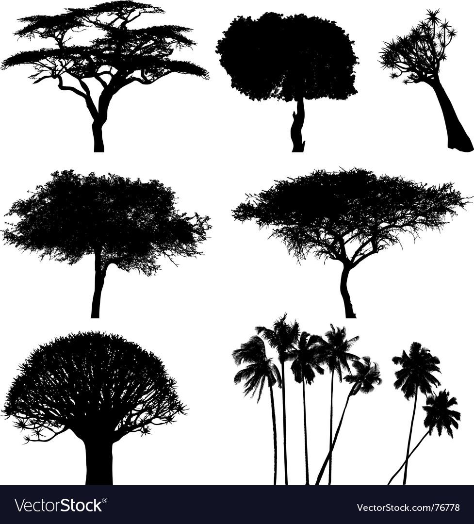 exotic trees royalty free vector image vectorstock rh vectorstock com trees victoria trees vectorworks 2009