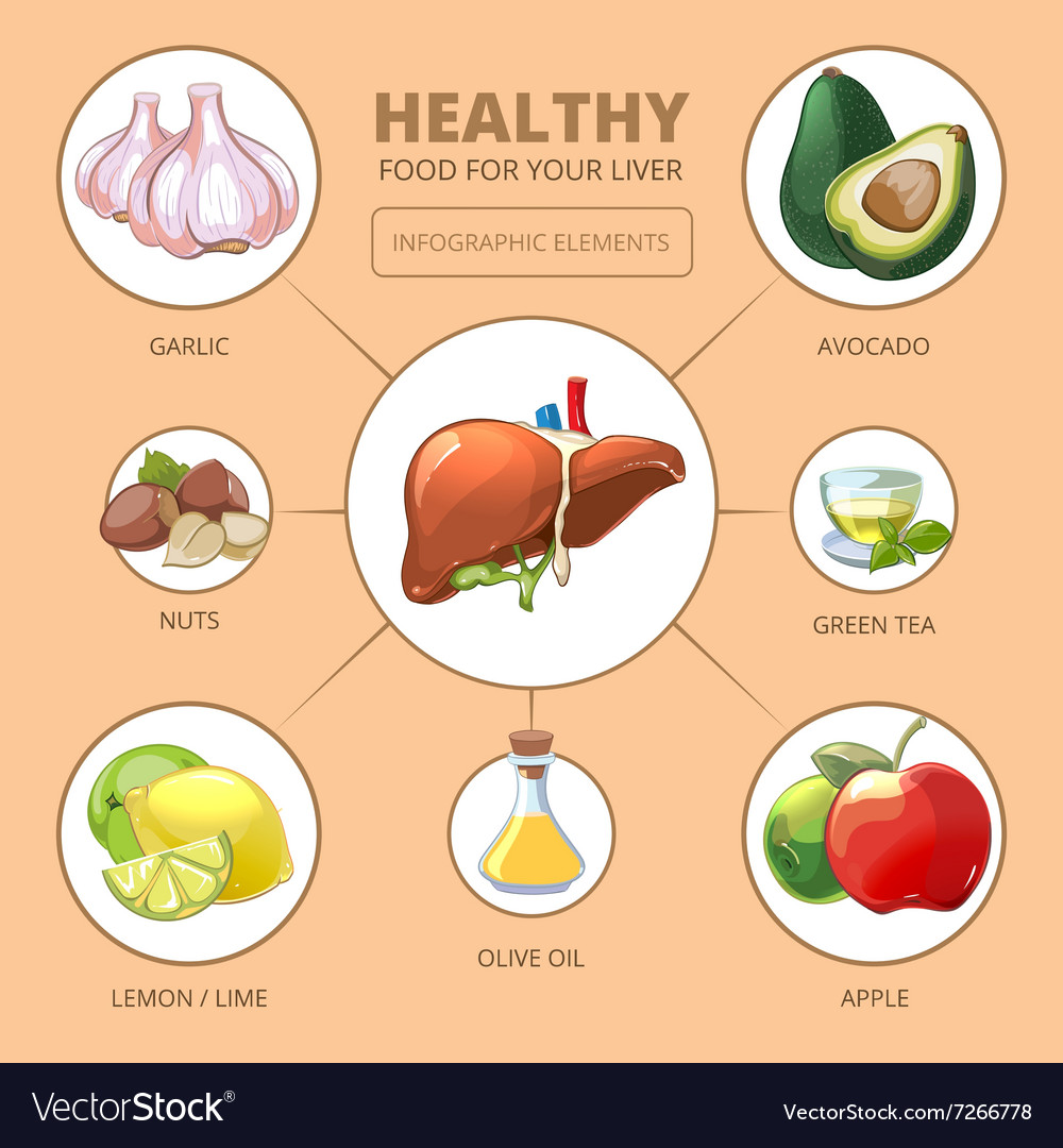 Healthy nutrition: what is the liver useful for