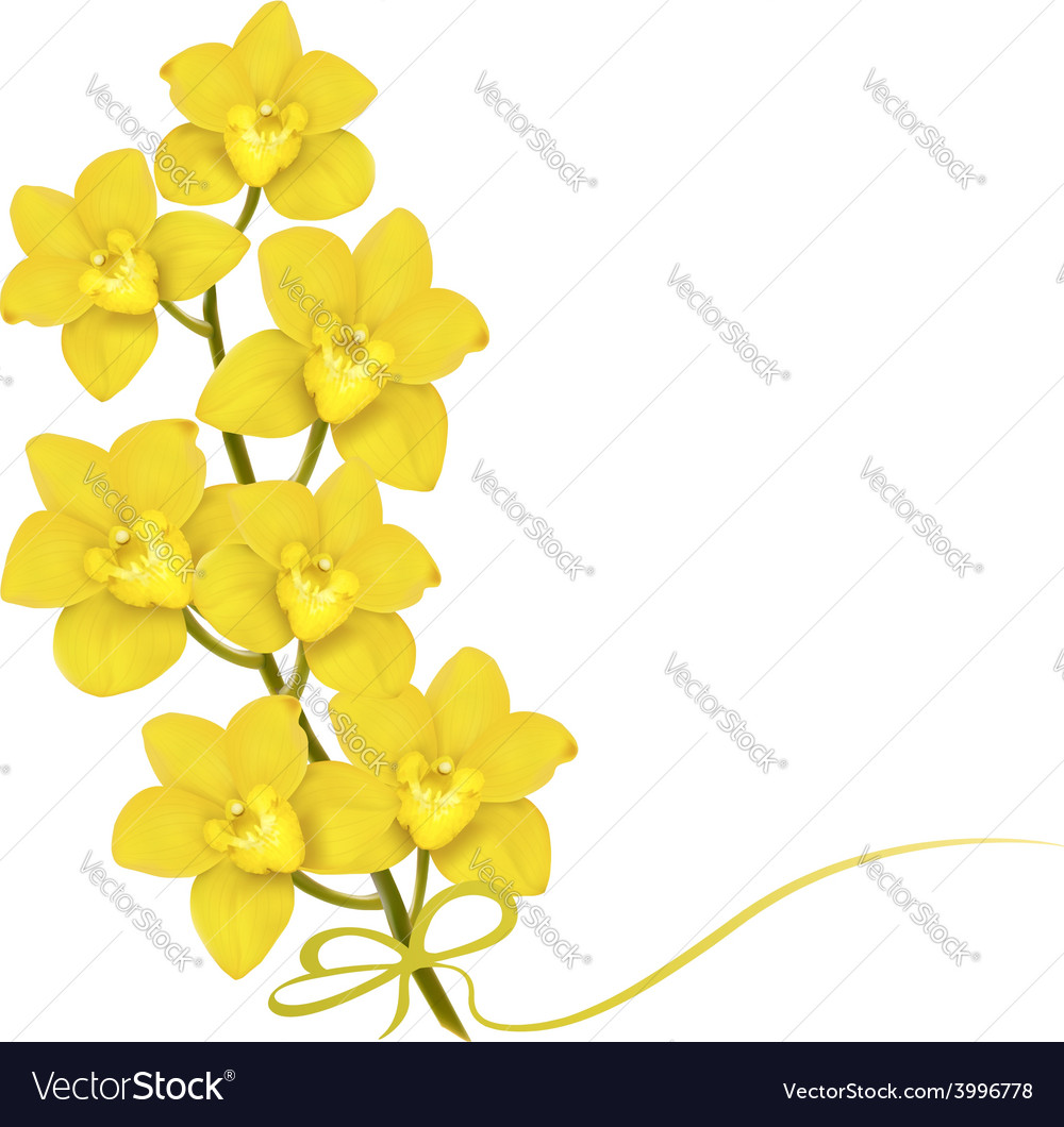 Holiday Yellow Flowers Background Royalty Free Vector Image