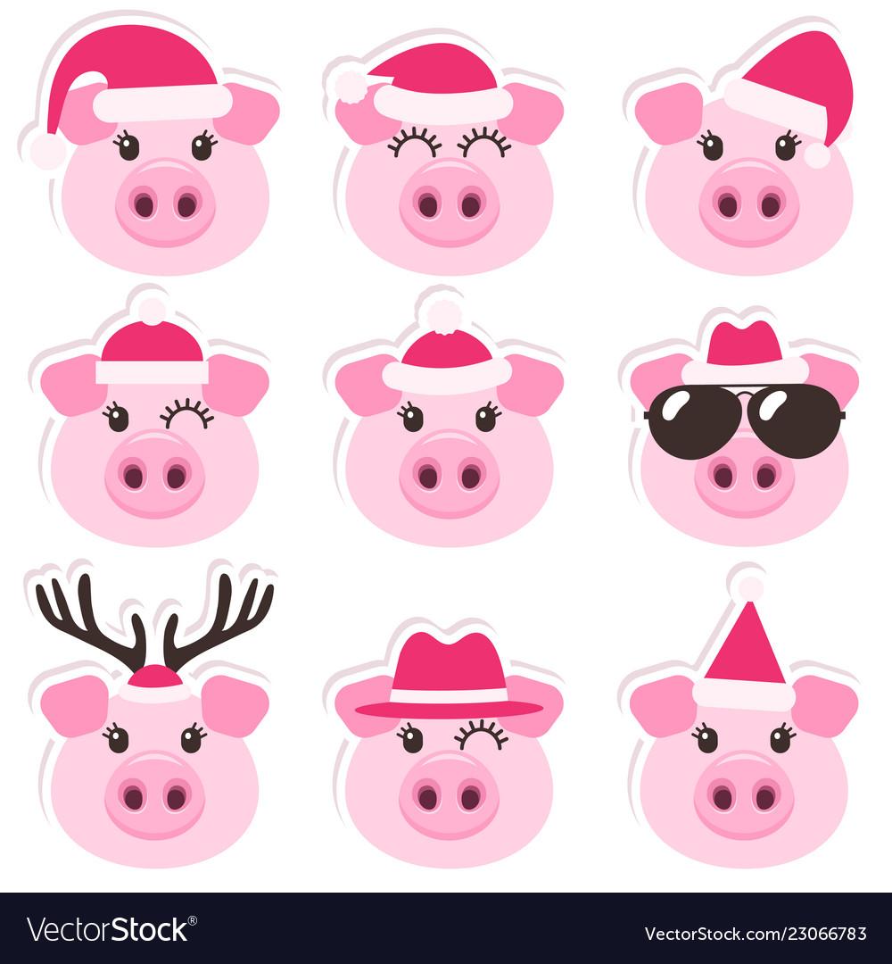 Cartoon cute pigs with christmas santa hats