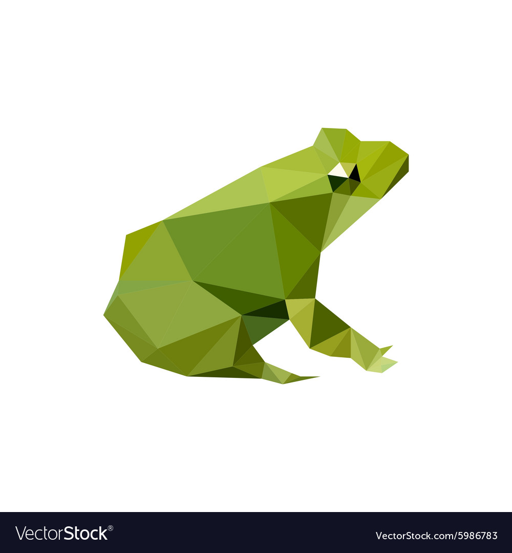 Papercraft Frog 3d origami Frog Made by My Daughter Pinterest ... | 1080x1000