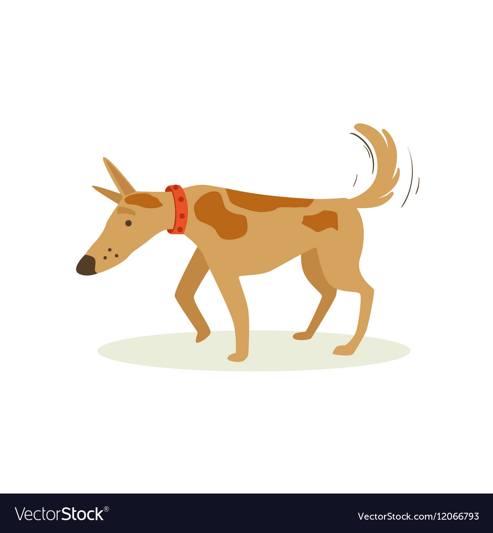 Brown Pet Dog Shuffling Away Disappointed Animal vector image