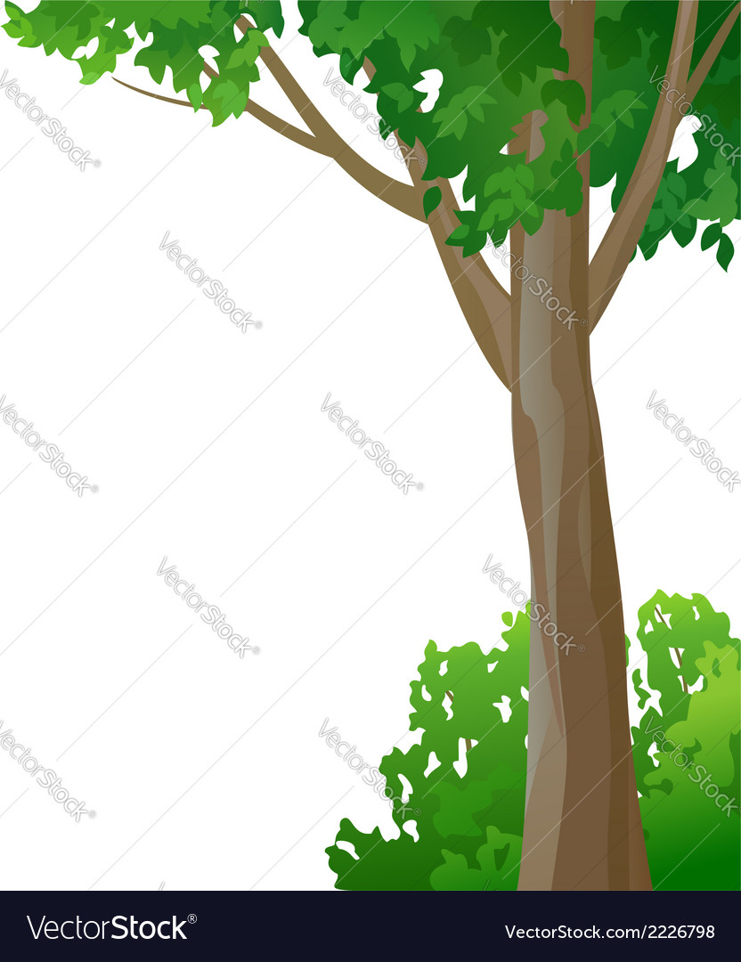 Tree and bush on a white background