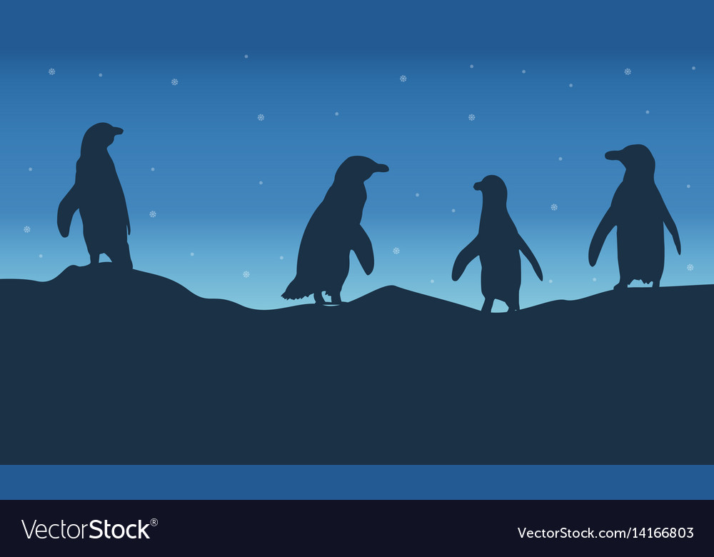 Penguin lines on hill at night landscape vector image