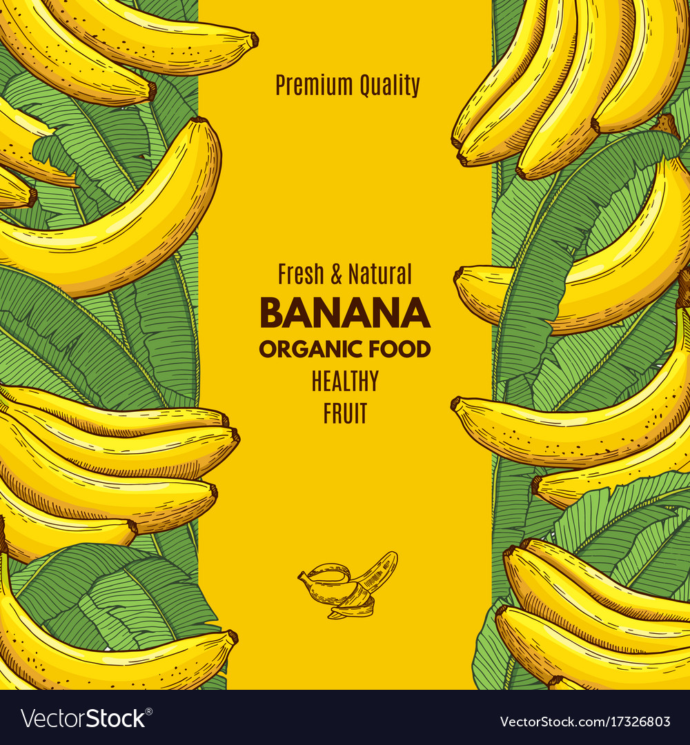 retro poster with of banana and place royalty free vector