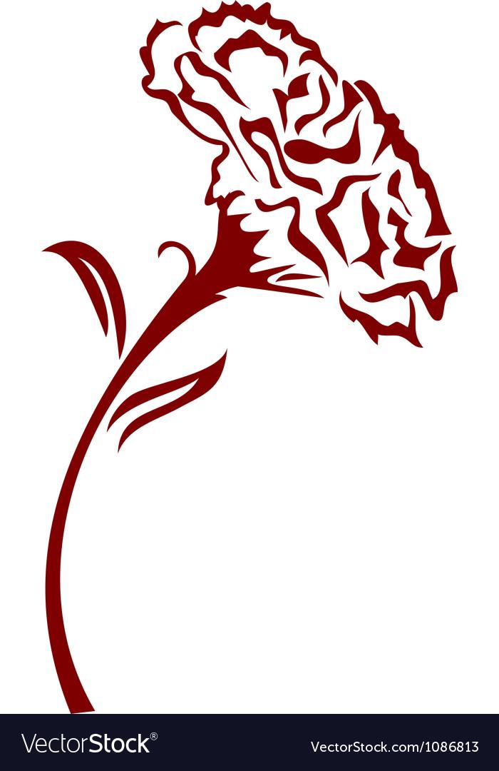 Carnation flower vector image