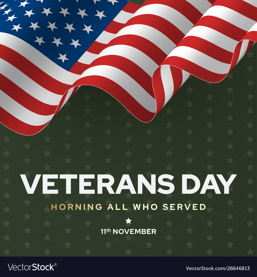 Veterans day poster national army and soldier