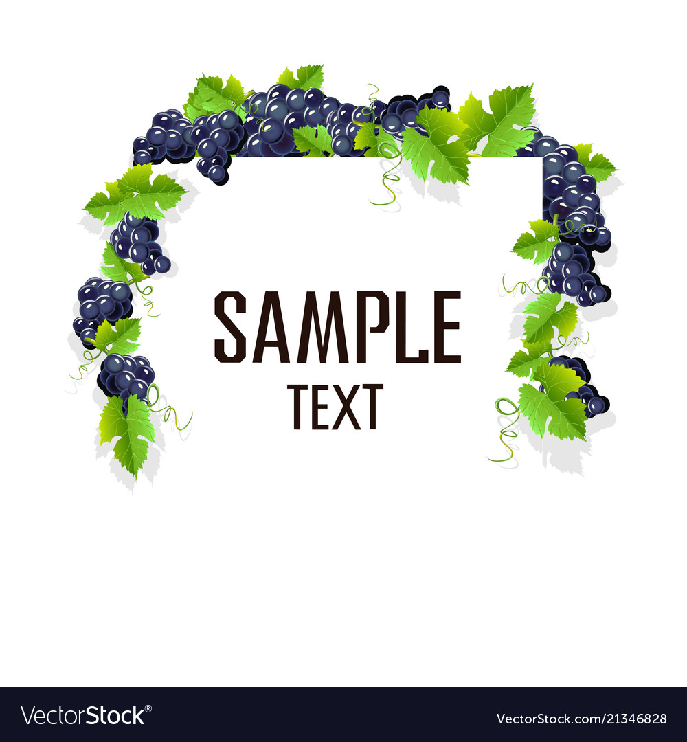 Frame With Grapes Royalty Free Vector Image Vectorstock