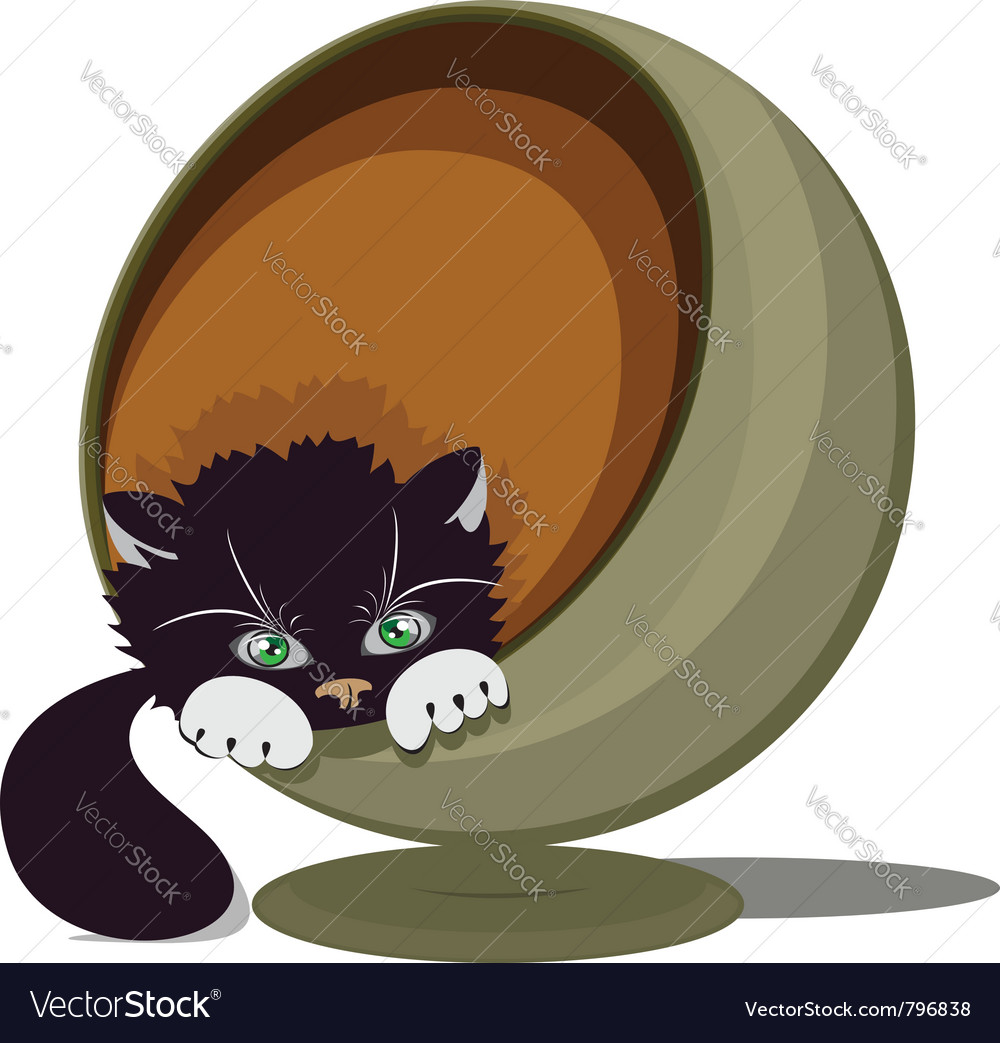 Cat in a round recliner vector image