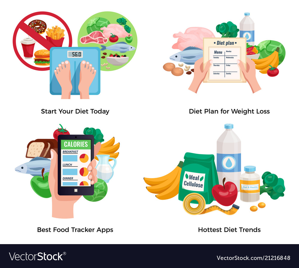 diet for weight loss 2x2 design concept royalty free vector
