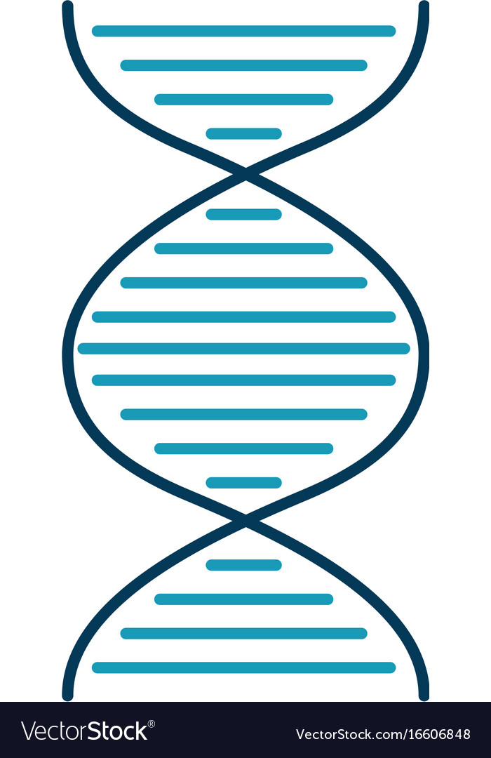 Dna molecule isolated icon