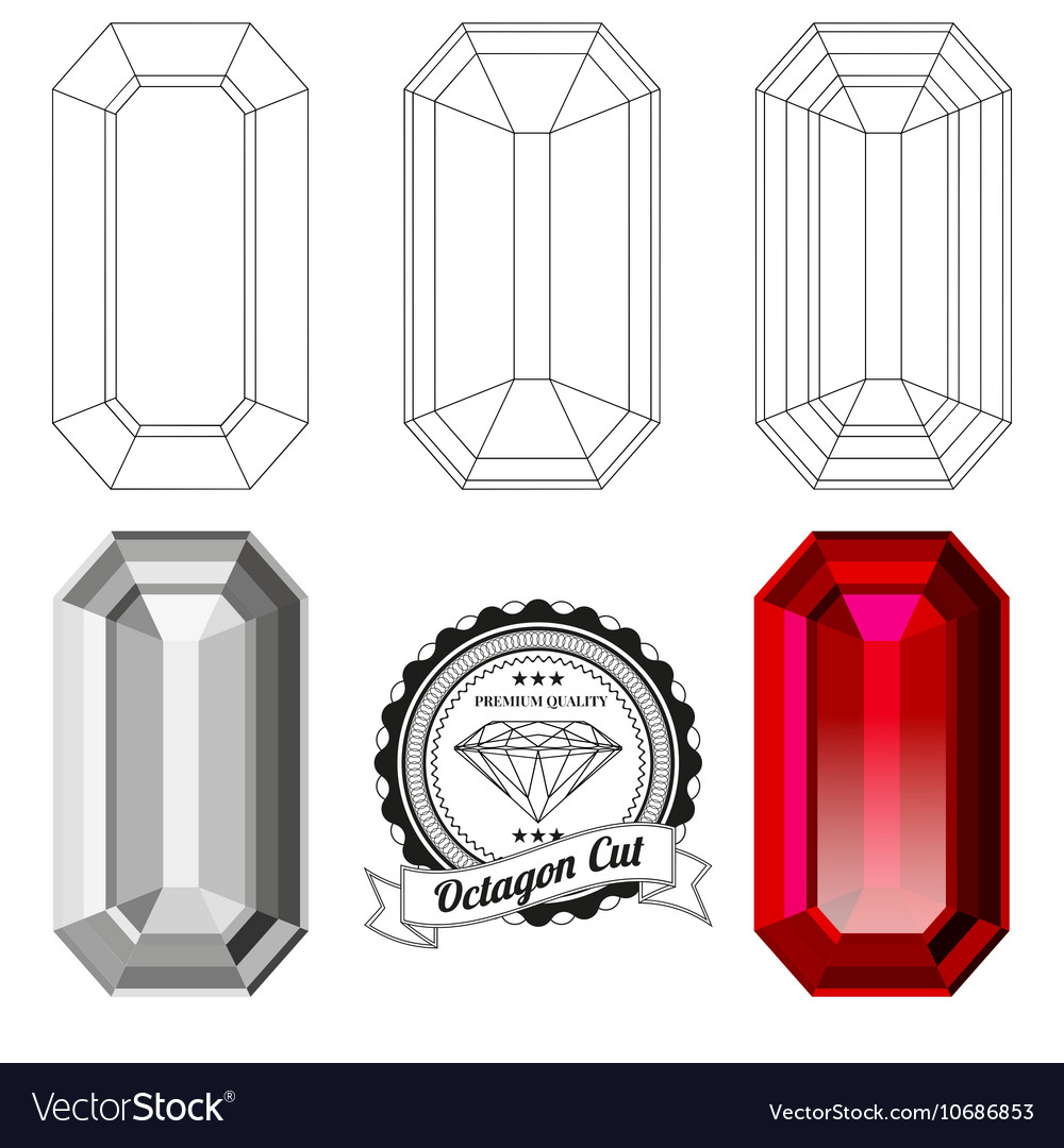 Set of octagon cut jewel views vector image