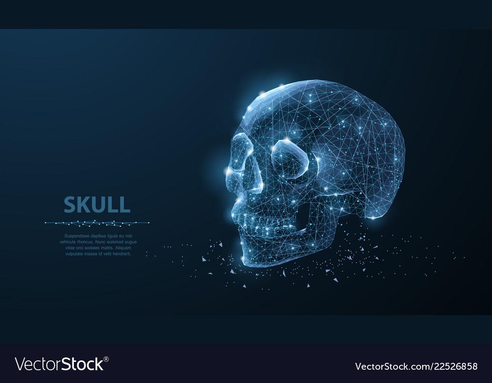 Skull abstract polygonal skeleton skull