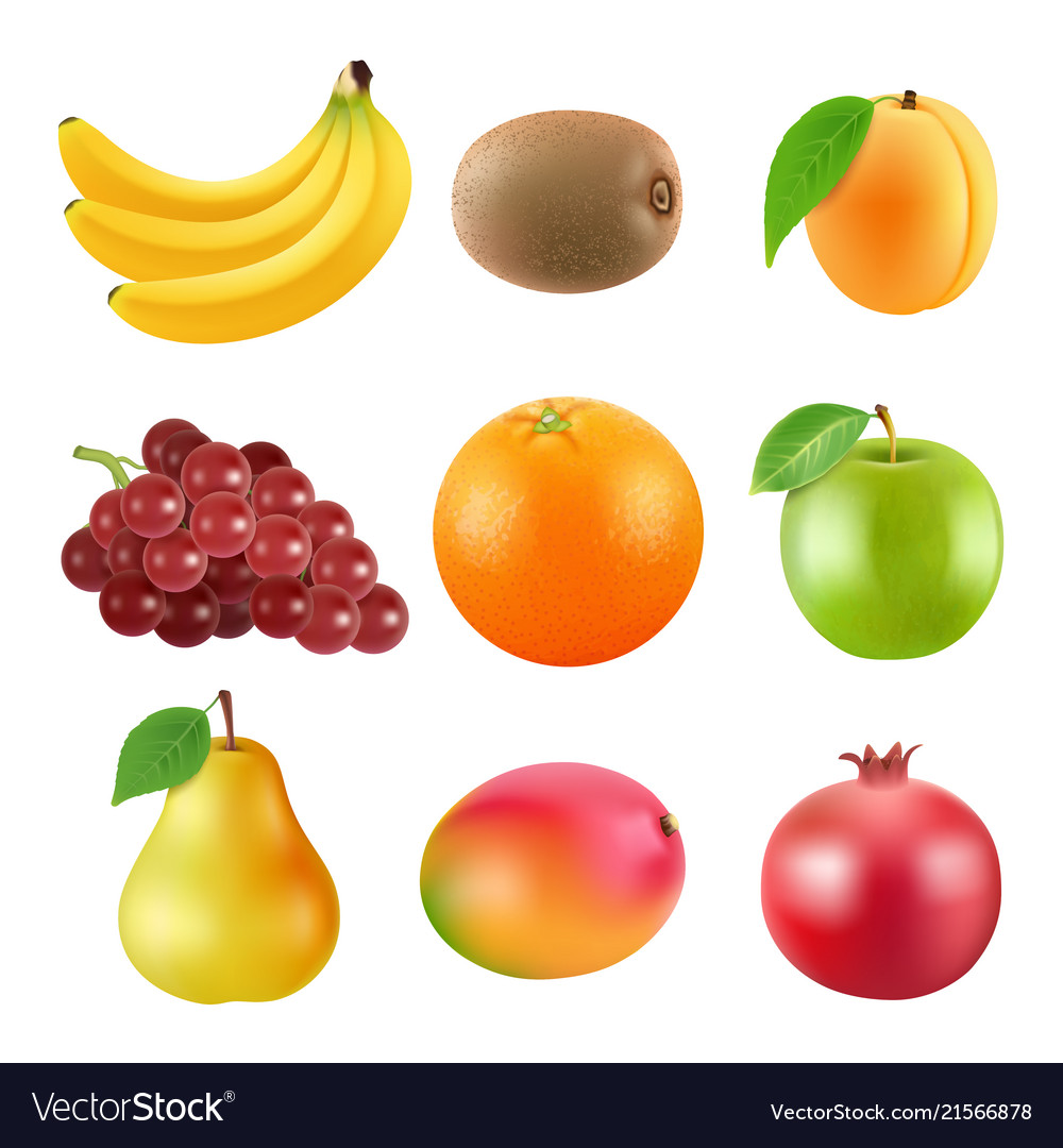 Different of fruits realistic