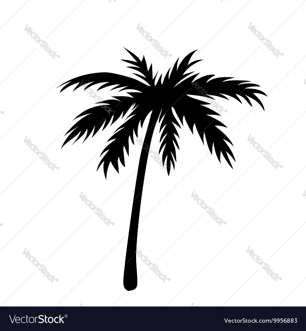 One palm tree outline