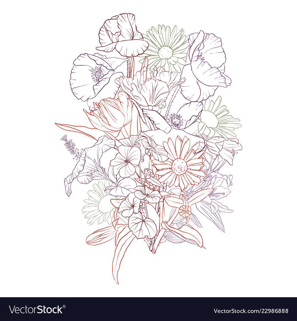 Drawing Background With Flowers Royalty Free Vector Image