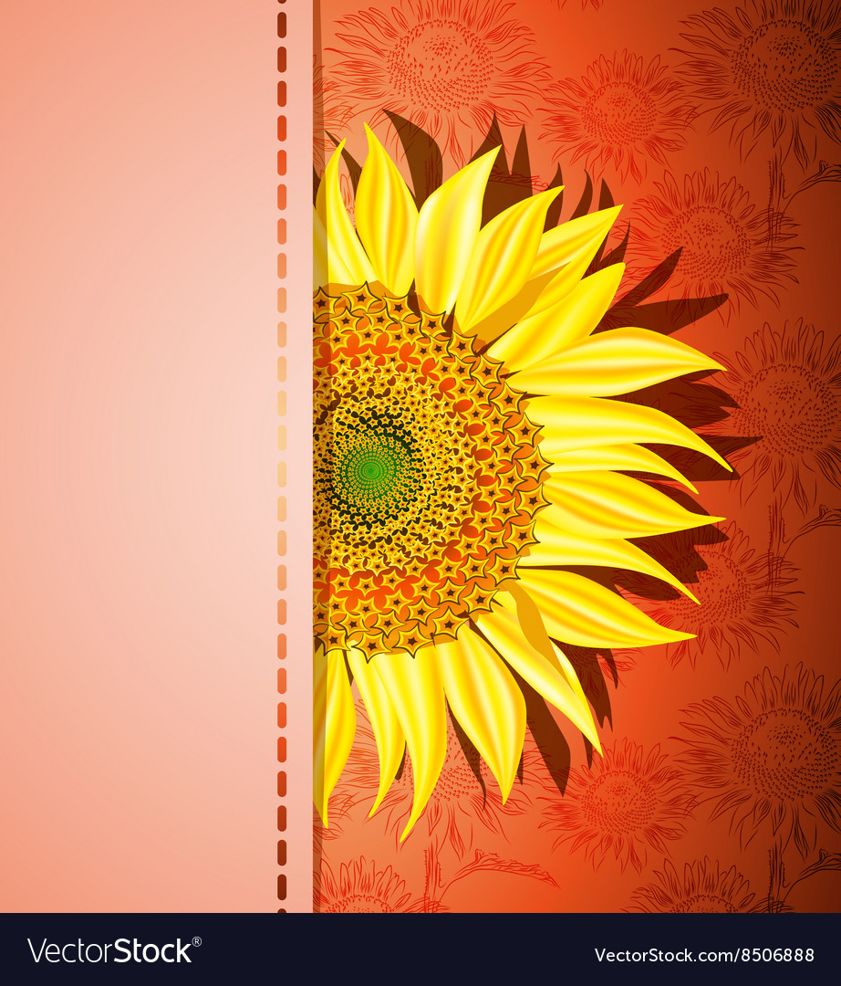 Red Sunflower Background