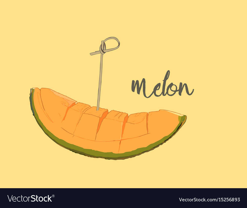 Cantaloupe melon fruit