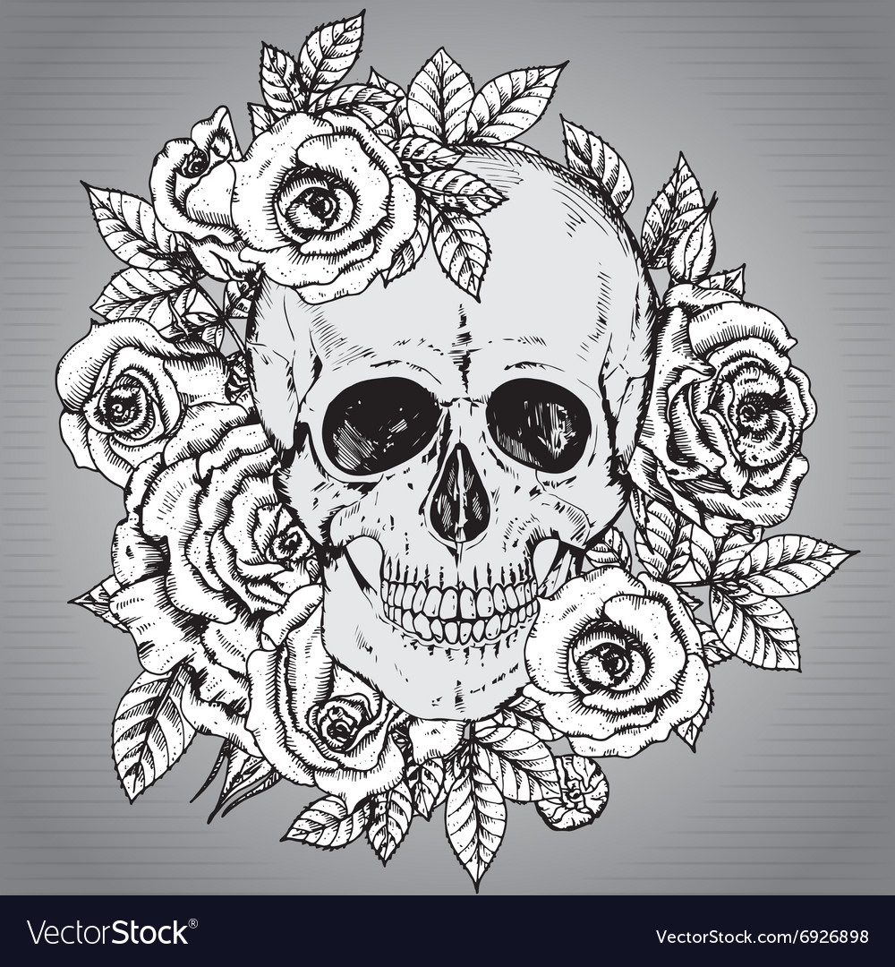 With hand drawn human skull with rose flower