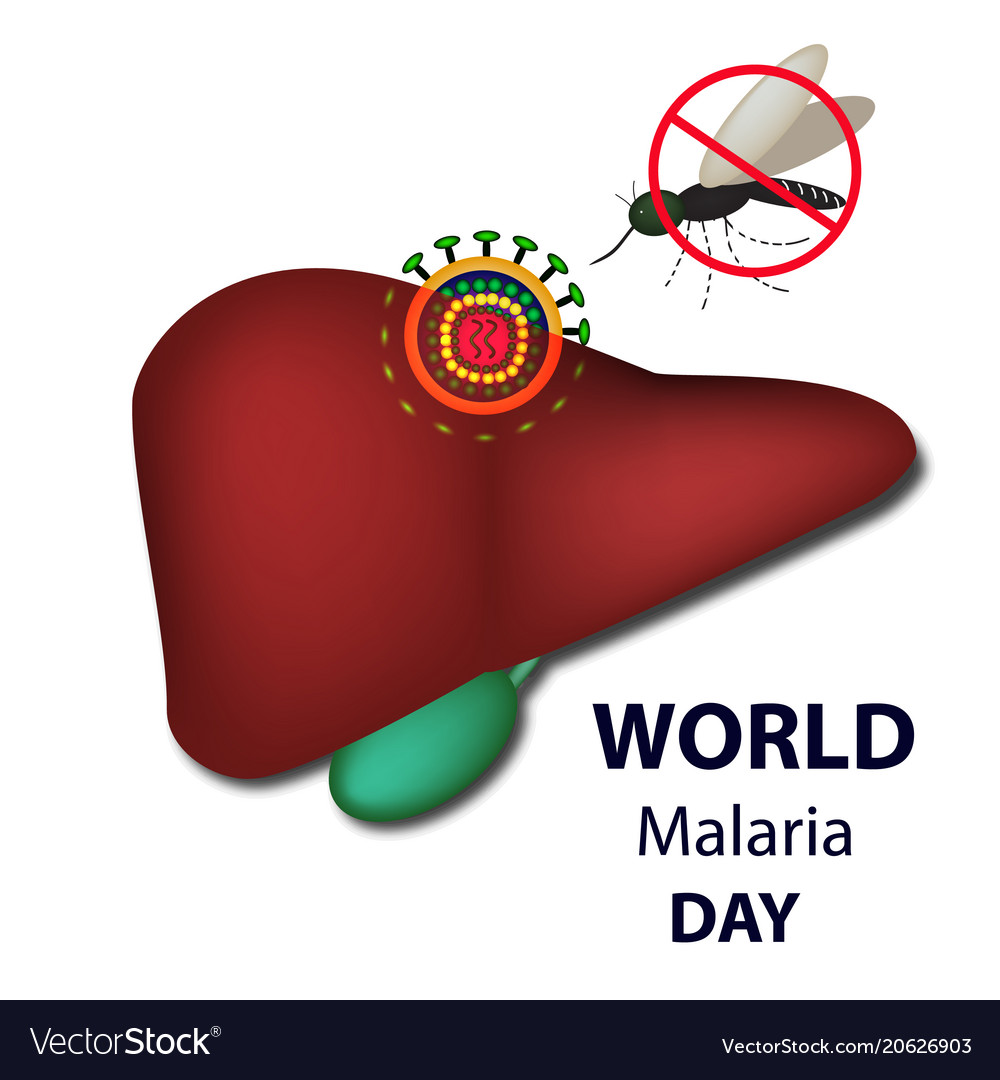 World malaria day mosquito bans sign liver virus vector image