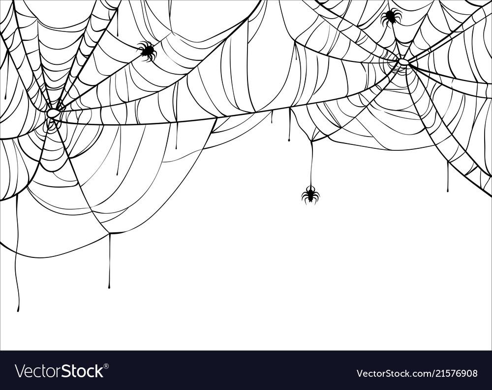 Halloween Spiderweb Background With Spiders Vector Image
