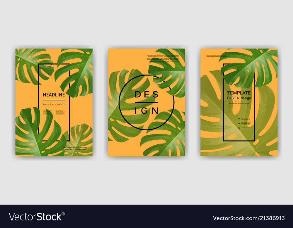 Background with tropical palm leaves exotic