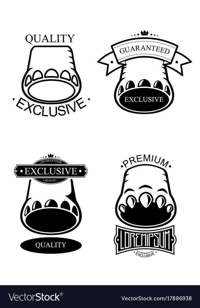 Logo set template vector image