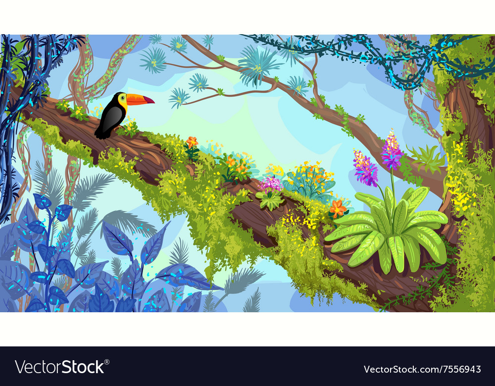 Jungle forest vector image