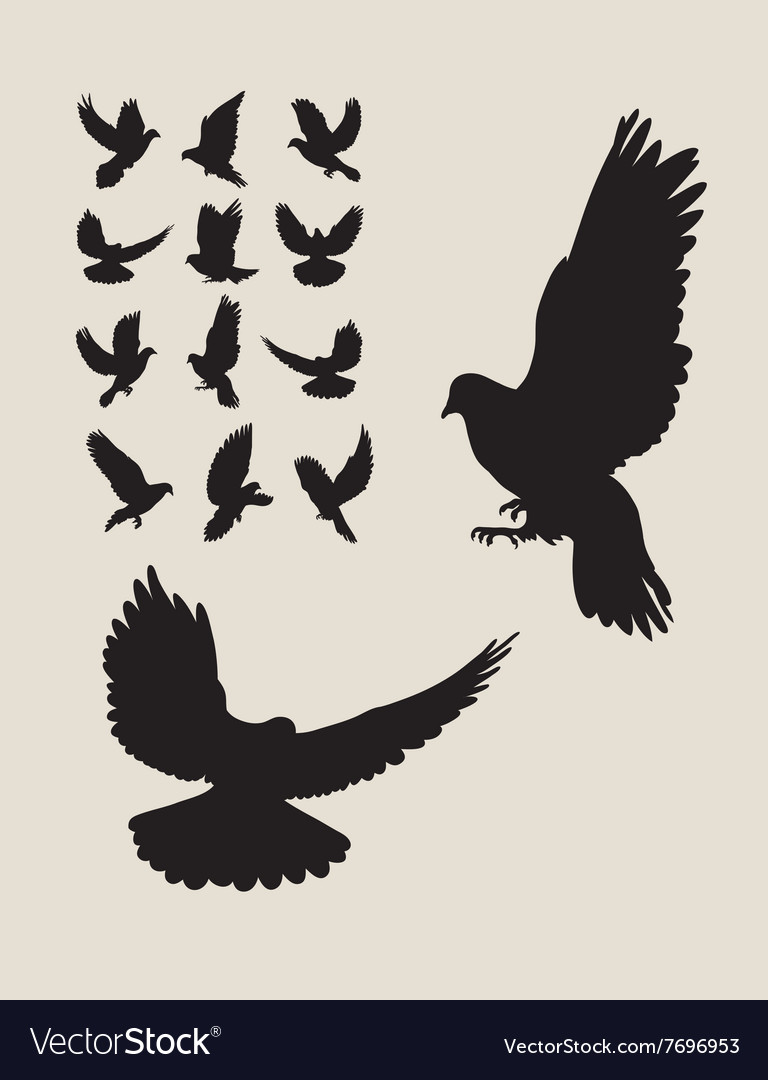 Dove Flying Silhouettes