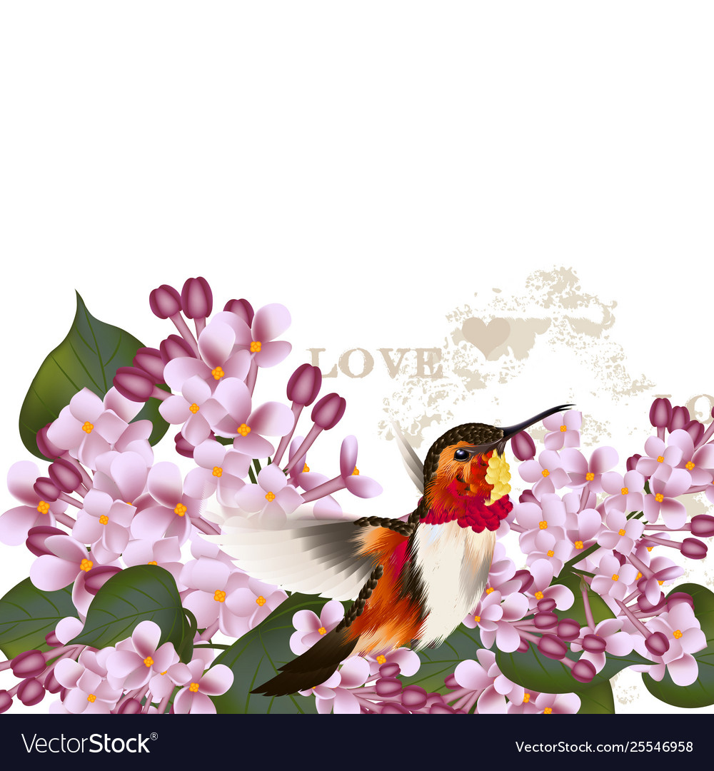 Beautiful pattern with lilac flowers and bird