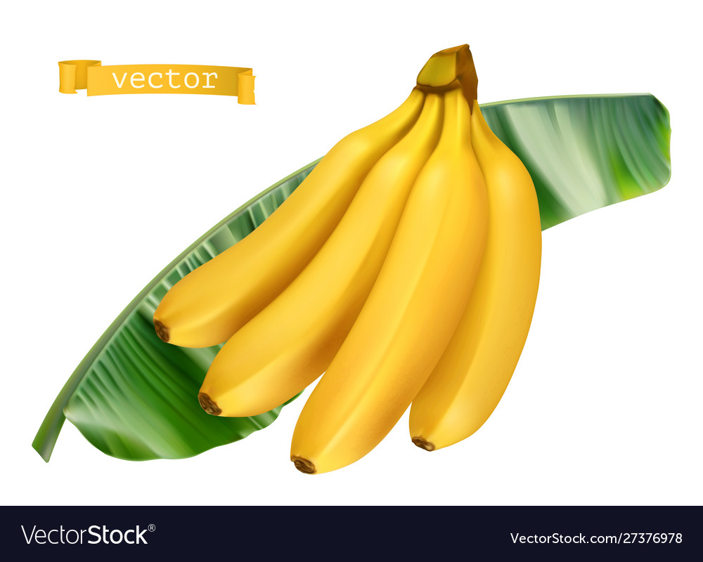 Banana on green leaf fresh fruit 3d realistic icon