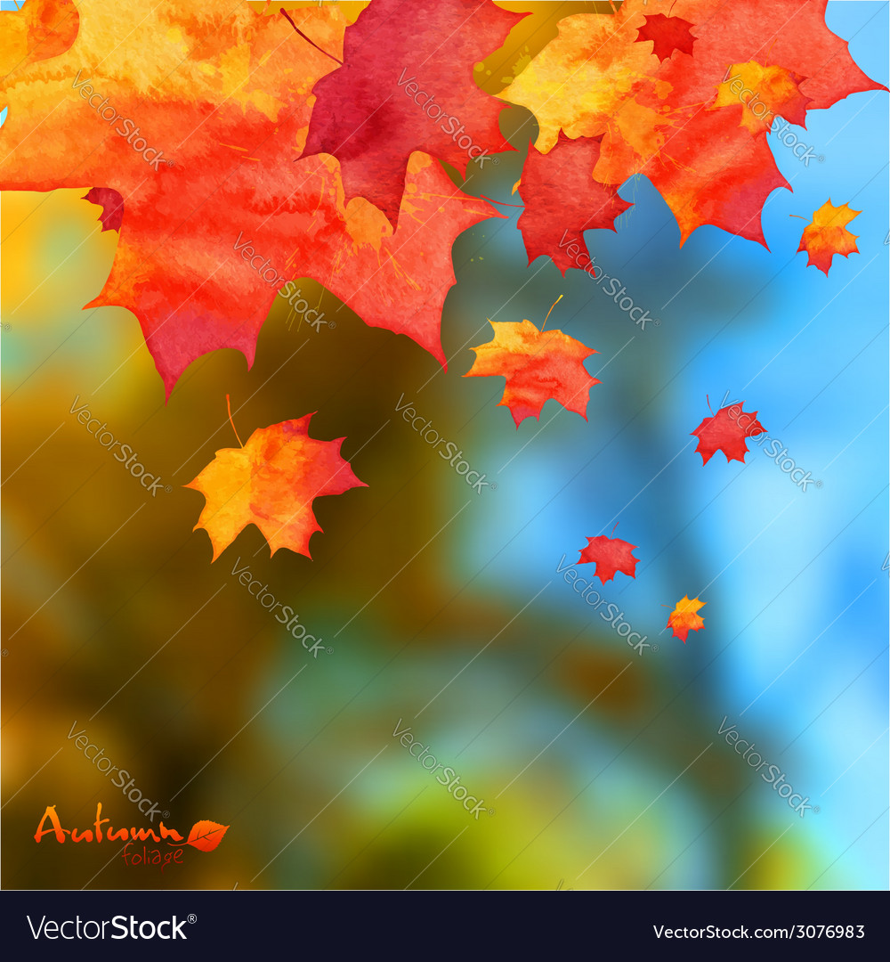 Autumn watercolor leaves on blurred photo