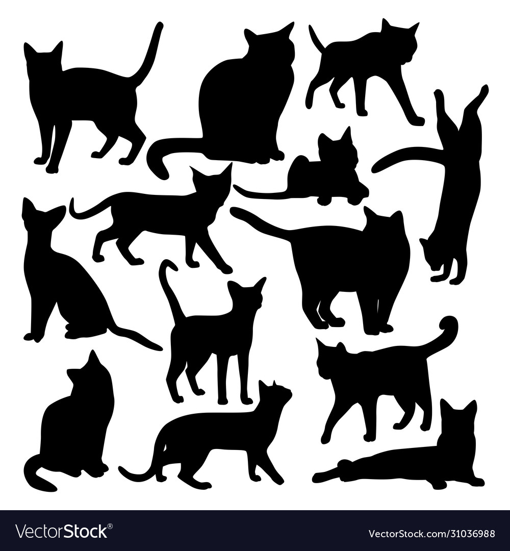 Collection black icons domestic cats