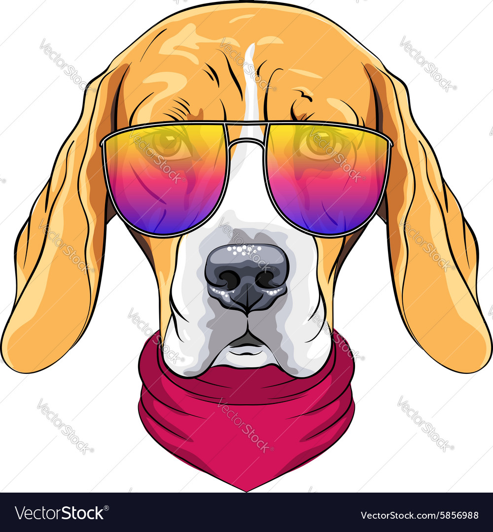 Hipster serious dog Beagle in glasses