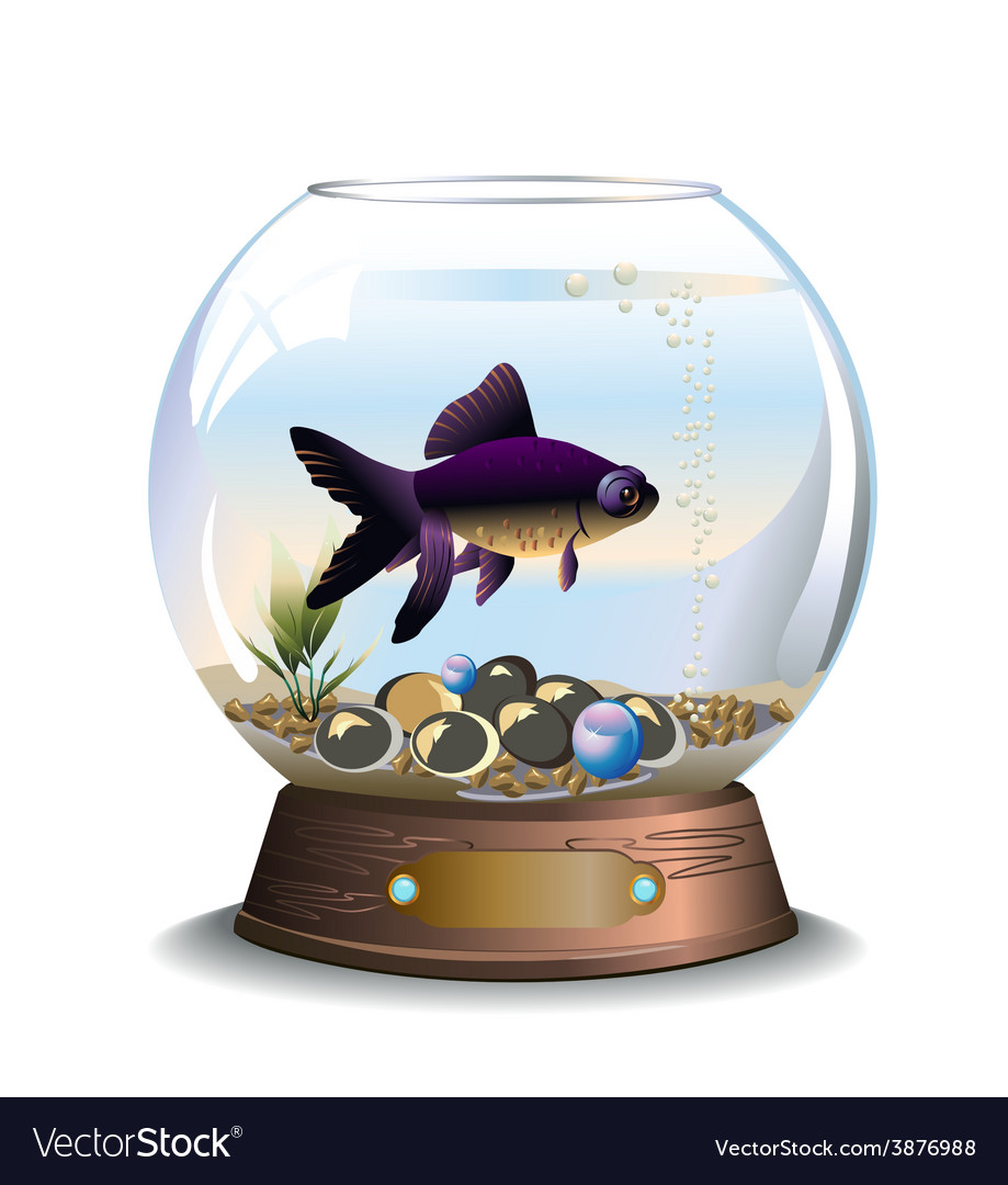 Round Aquarium With One Fish Royalty Free Vector Image