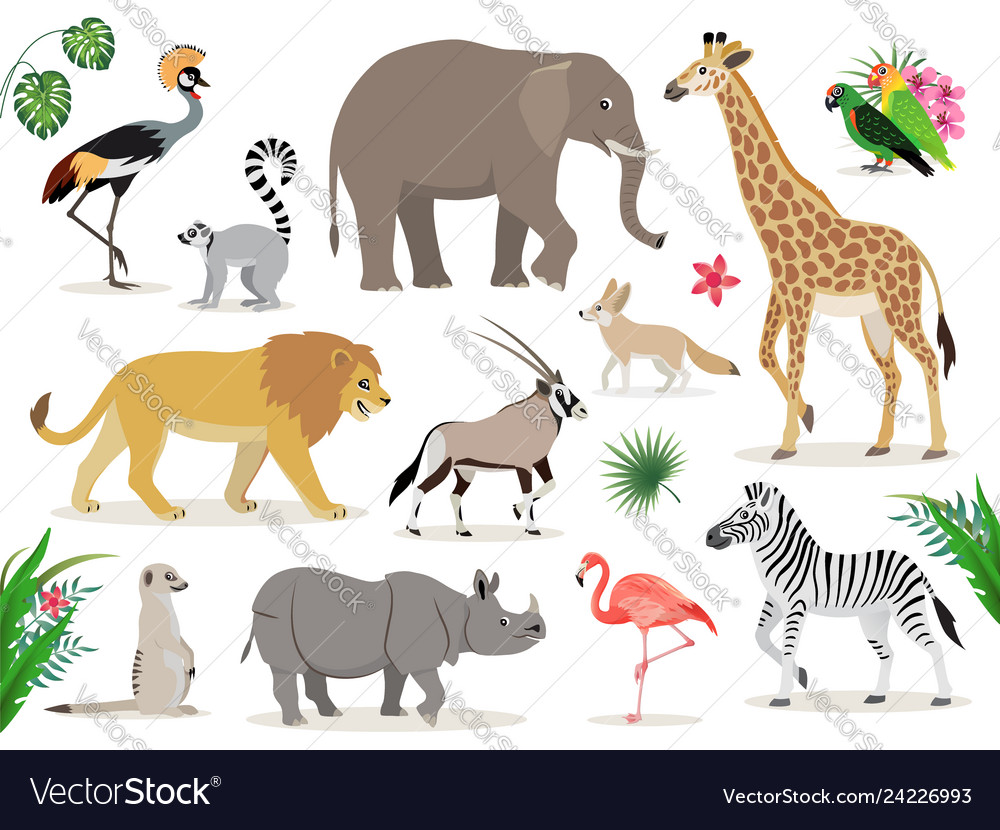 Set cute african animals icons isolated on