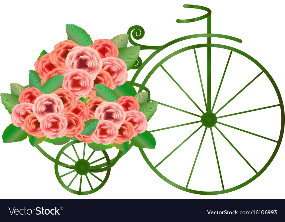 Vintage bicycle with bunch of roses