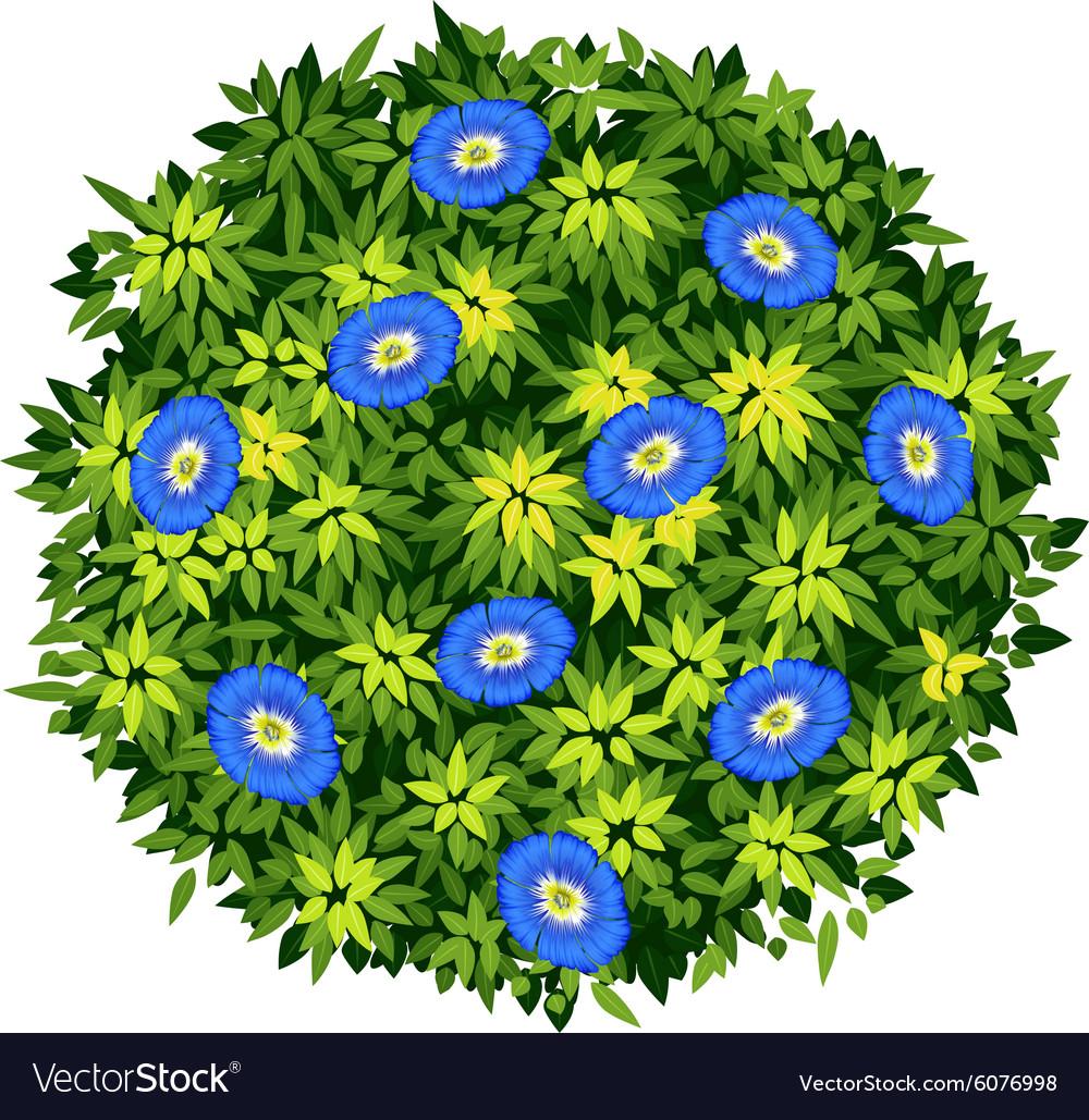 Blue flower on green bush royalty free vector image blue flower on green bush vector image izmirmasajfo