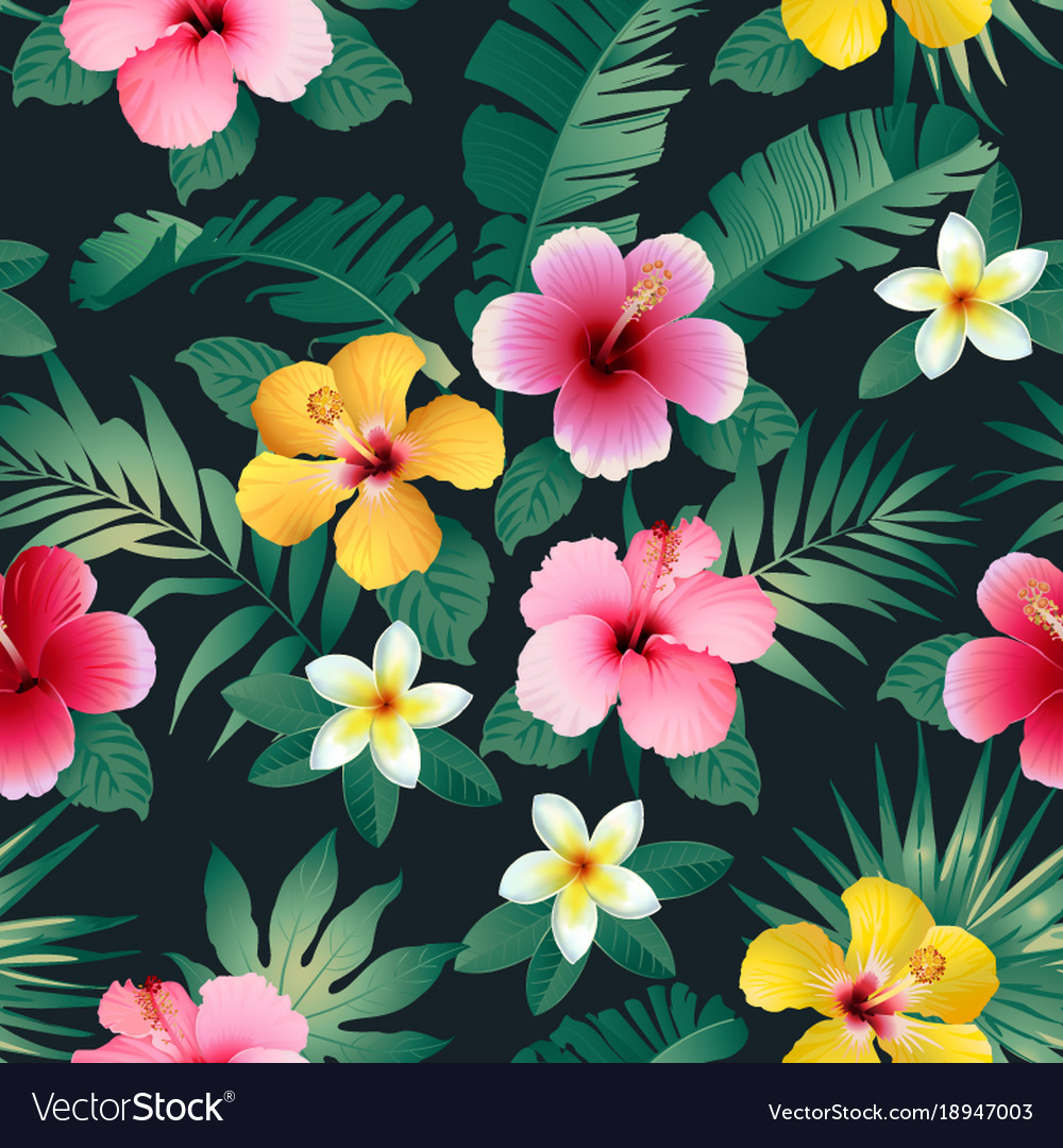 Tropical Flowers And Leaves On Dark Background Vector Image